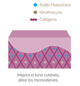 Ácido hialurónico - Liposomial